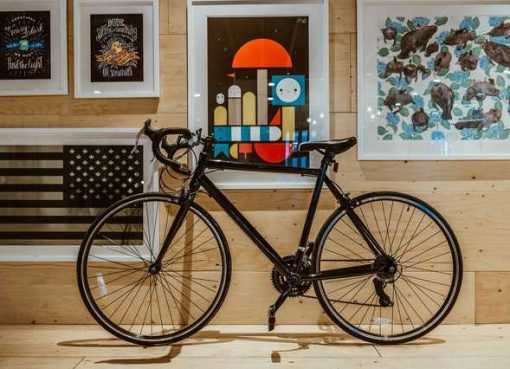 best bicycles in india for adults